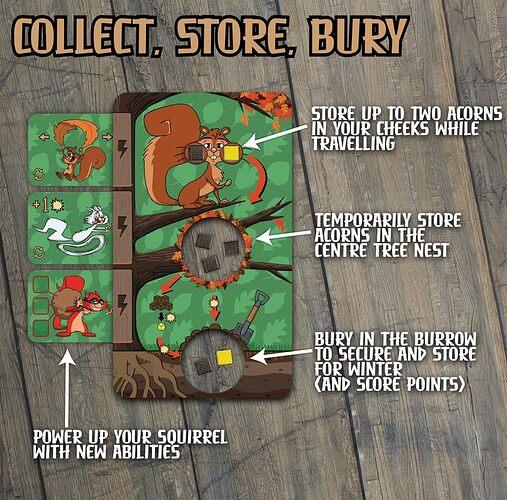 nuttysquirrels3